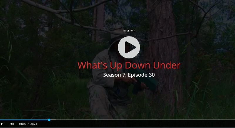 whats up downunder tv