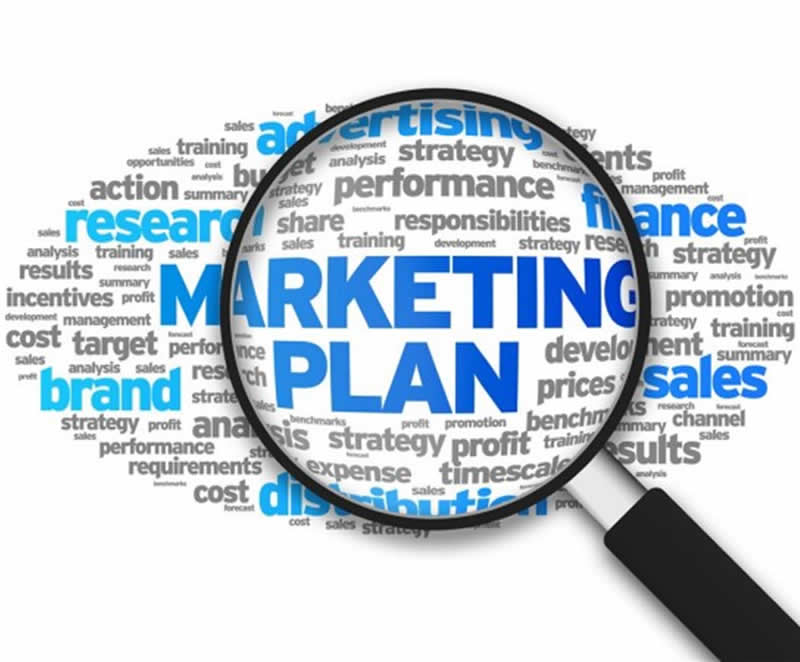 marketing plan for your year