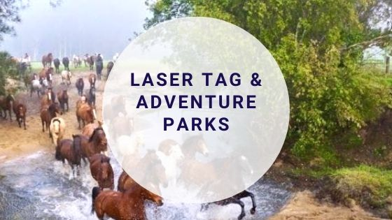 Laser Tag and Adventure parks